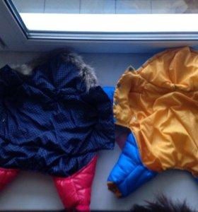 Зимняя одежда для собаки пуховик