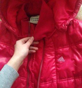 Куртка  adidas оригинал !