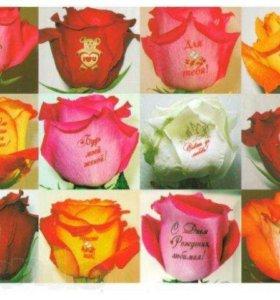 Говорящие цветы (наклейки на цветы)