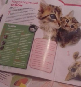 Журналы про кошек, 3 выпуска