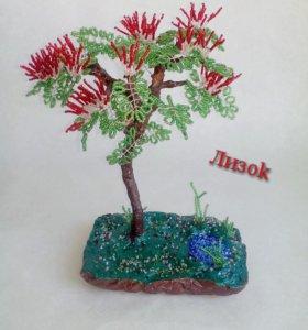 """Дерево """"Альбиция"""""""