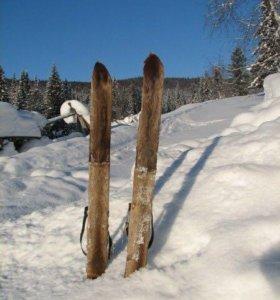 Камусные лыжи (лось)