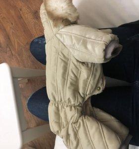Собачий комбинезон