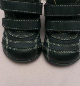 Кроссовки ботинки chicco кожа