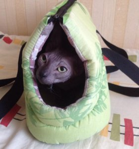 Переноска для маленькой собачки или кошки.