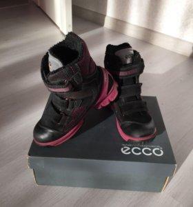 Сапоги для девочки Ecco