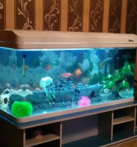Аквариум 240 литров с рыбами и со всем комплектующ