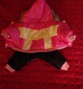 Тёплый мягкий костюм капюшон с мехом !размер s!