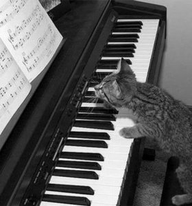 Репетитор по музыке. Уроки фортепиано