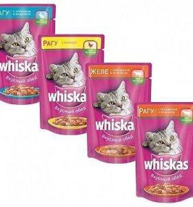 Влажный корм для кошек и котят
