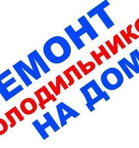Ремонт холодильников Кировск,Шлиссельбург и район