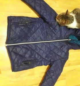 Куртка , осень