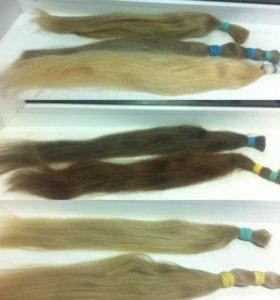 Южнорусский волос в срезах