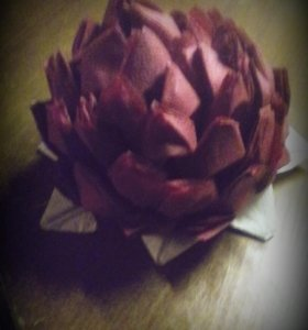 Декоротивный цветок