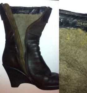 Зимние ботинки GLORIA