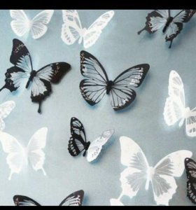 Бабочки настену