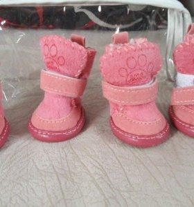 Зимние ботинки для собачки