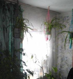 кашпо макраме подвесные