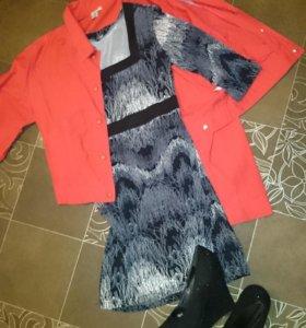 Платье, пиджак, туфли