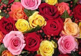 Доставка цветов по Сочи