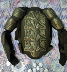 Черепаха Vega.