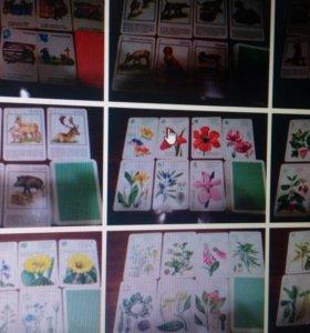 Картинки для детишек и их родителей!