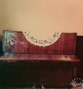 Фортепьяно ( пианино)