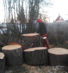 Удаление деревьев, спил деревьев, валка деревьев.