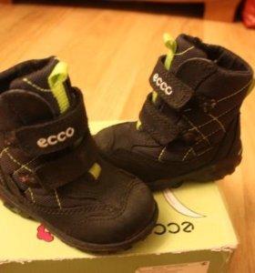Ботинки  Ecco Track Uno (Gore-tex)