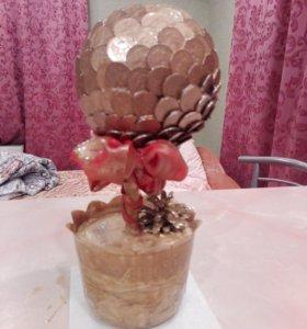 Топиарии. Денежное дерево