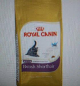 Роял канин для Британских котят