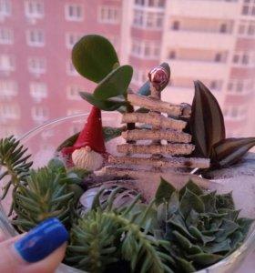 Флорариум новогодний