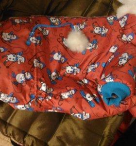 Зимняя одежда для маленькой собачки