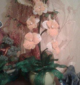 Бисерные орхидеи