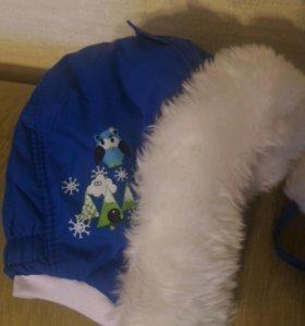 Новая зимняя шапка Lummie