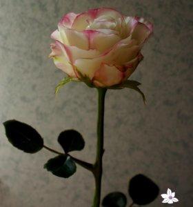 Полноразмерная роза из холодного фарфора