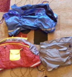 Куртки на пекинеса