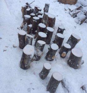 Деревянные спилы (пни)