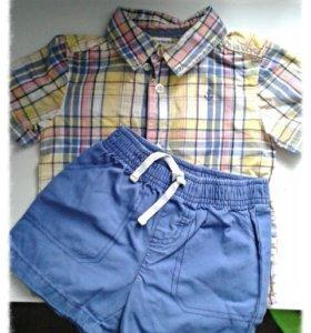 Рубашка+шортыCarters
