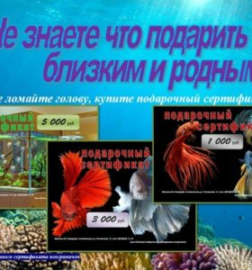 Завоз аквариумов