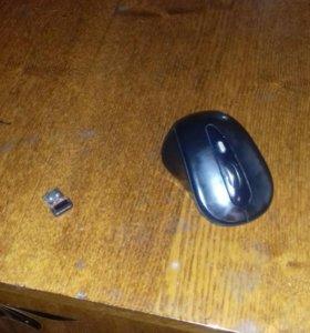 Компьюиерная Мышь.