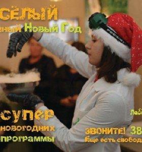 Новогодние праздники в научном стиле