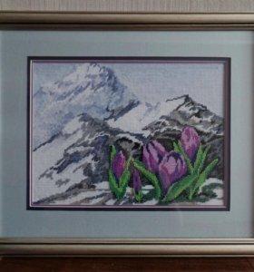 Картина Альпийские цветы