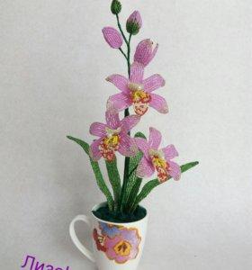 Распродажа!!!Орхидея