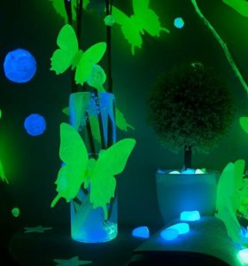 Бабочки флуоресцентны