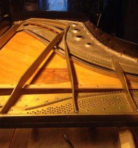 Настройка фортепиано и ремонт