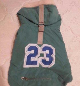 Новая теплая курточка. Размер М.