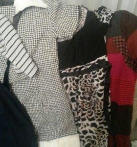 Платья и туники