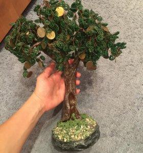 Денежное дерево