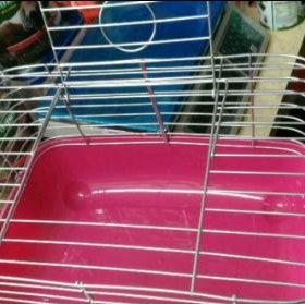 Клетка для морской свинки.